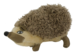 Wild Life Dog Hedgehog