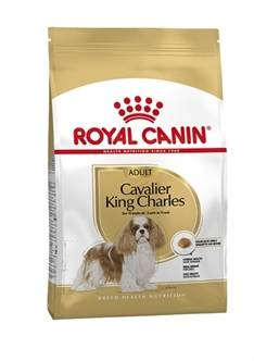 ROYAL CANIN CAVALIER KING CHARLES ADULT (me)