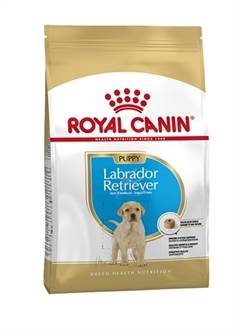 ROYAL CANIN LABRADOR RETRIEVER JUNIOR (me)
