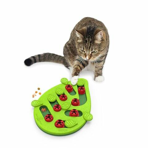Buggin' Out Puzzle & Play – The fun starts Meow!