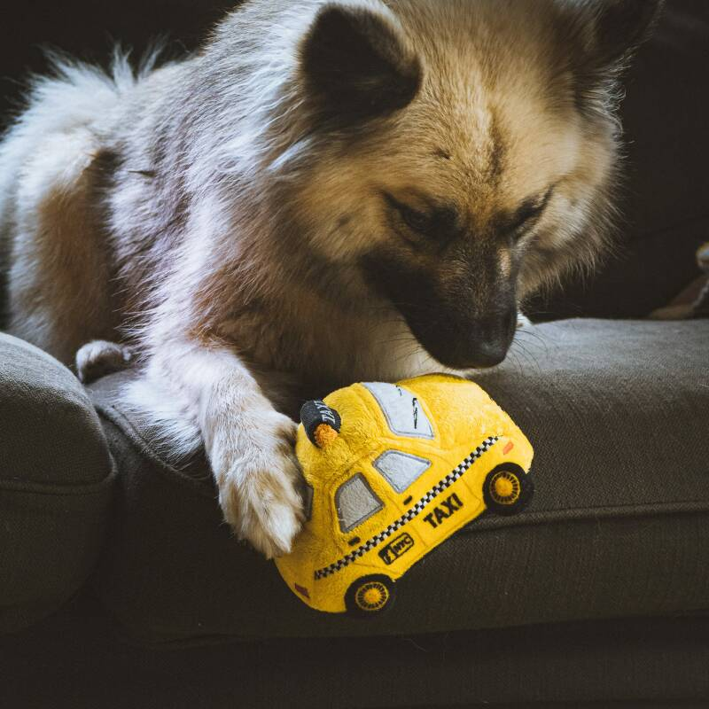 NIEUW! P.L.A.Y. Pet Canine Commute Collection - New Yap City Taxi