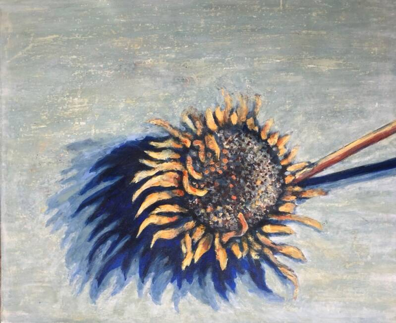 Sketch of a Sunflower | Adéle du Plessis | Still-life and Flora Painting