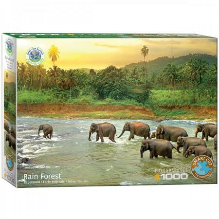 Save the Planet! Rain Forest (1000)
