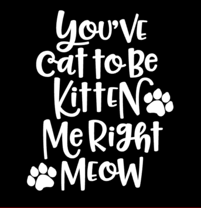 You've cat to be kitten me (Wit)