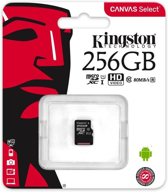 Kingston 256 GB Micro SD Class 10 Canvas Select