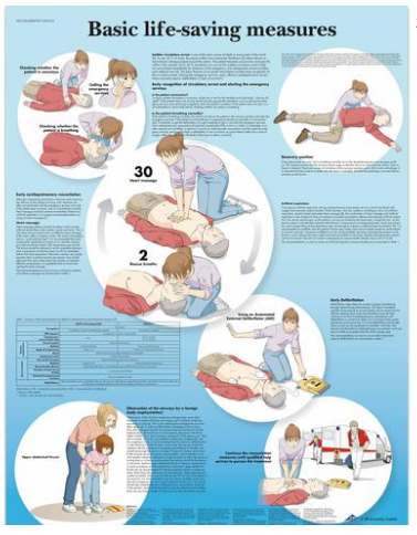 Basic Life Support (BSL)