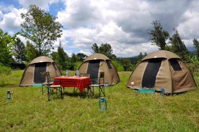 safari-tents-1.jpg