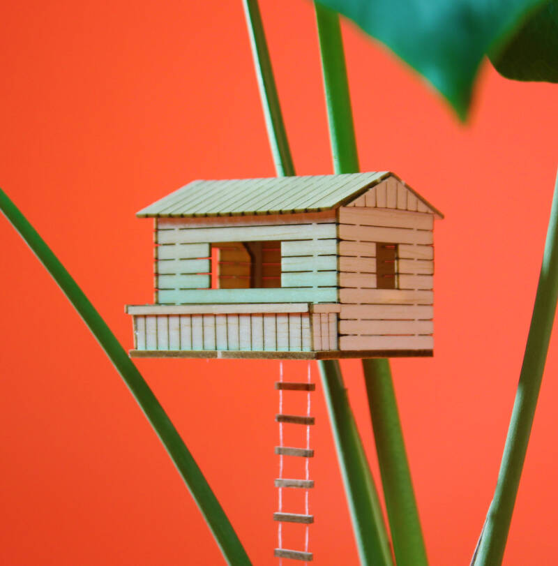 Plant-shed