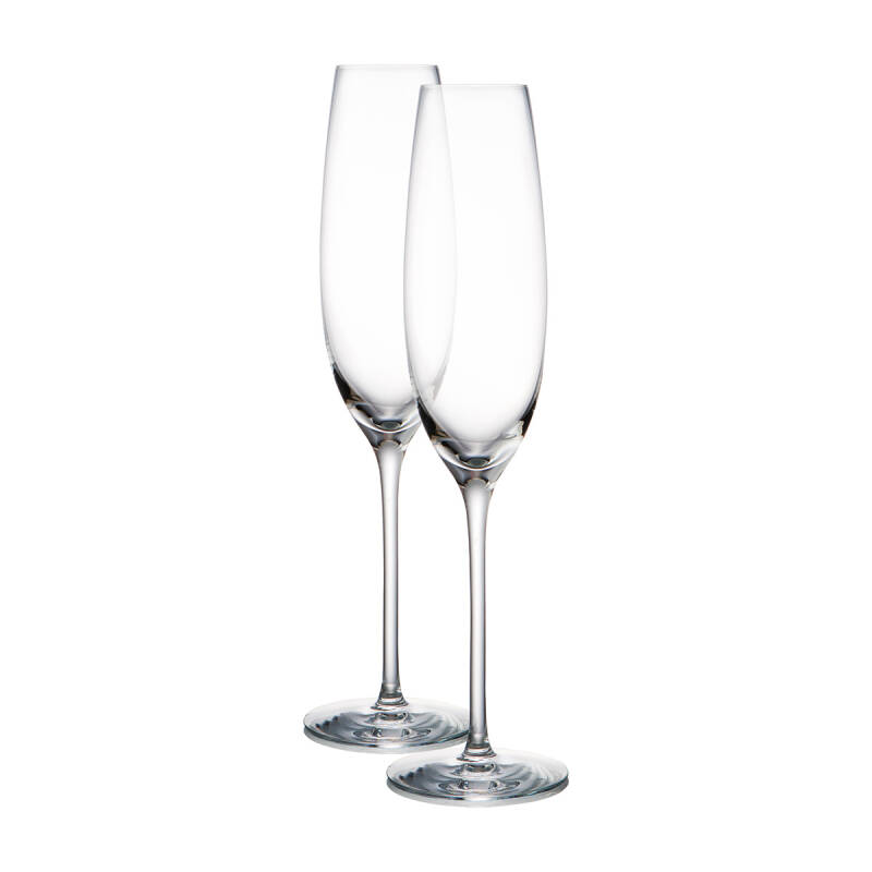Expert Y - Champagne - Set of 2