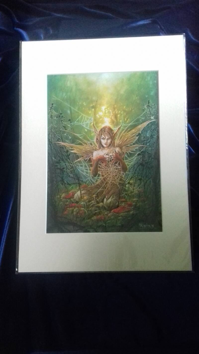 LAATSTE!  The Cobweb Fairy, Print