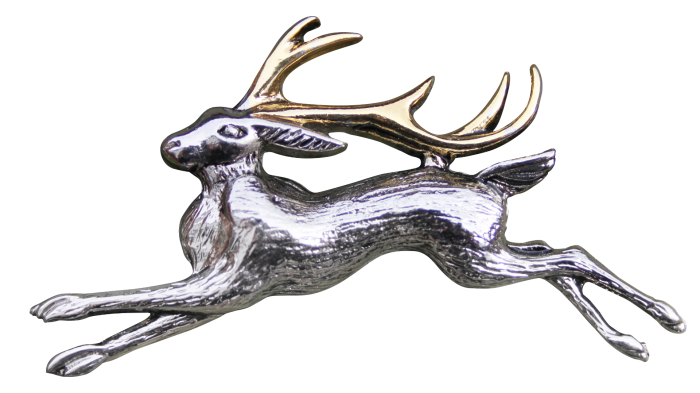 The Jackalope, Broche