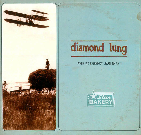 Diamond Lung – When Did Everybody Learn To Fly? CD