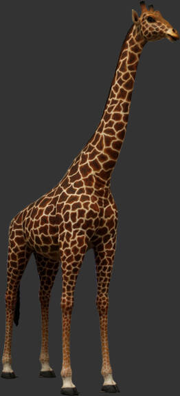 A1454 G7 jungle Giraffe naturel laminât résine 330 X 265 CM