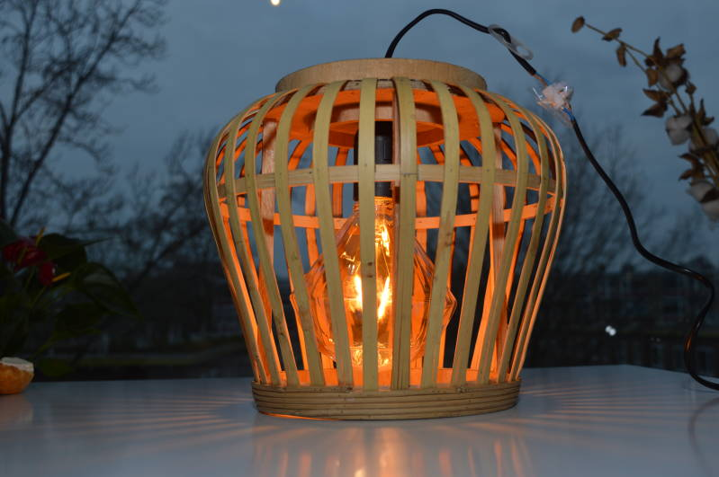 Light from the jungle hanglamp