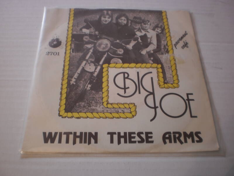 Single Big Joe - Within these arms