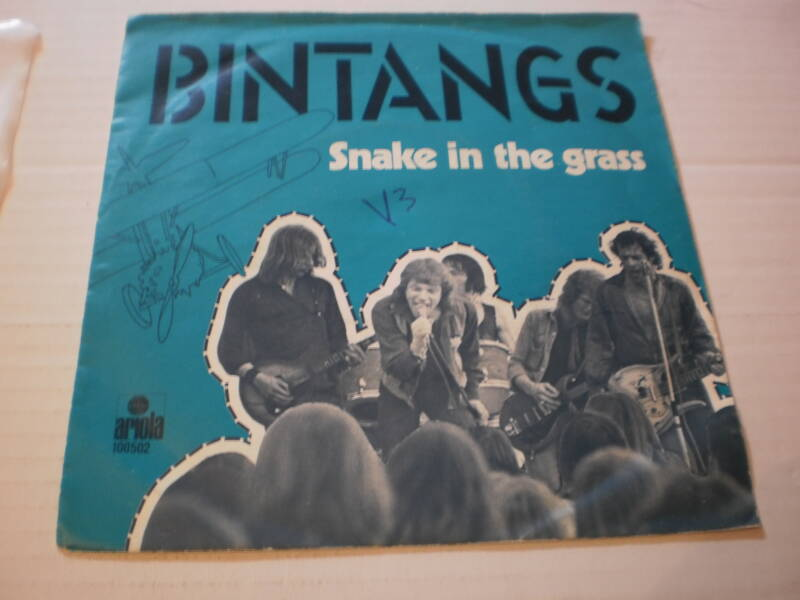 Single Bintangs - Snake in the grass