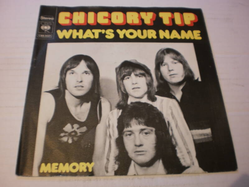 single Chicory Tip - What's your name