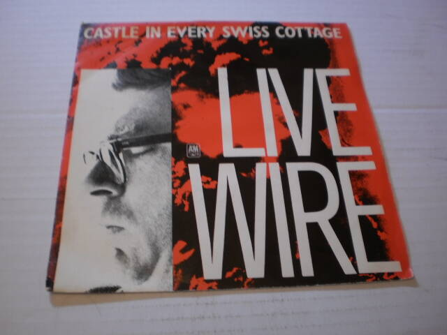 Single Live Wire - Castle in every swiss cottage