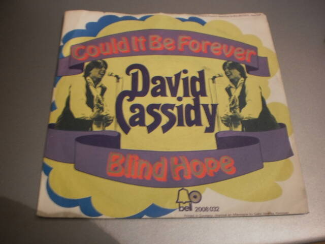 single David Cassidy - Could it be forever