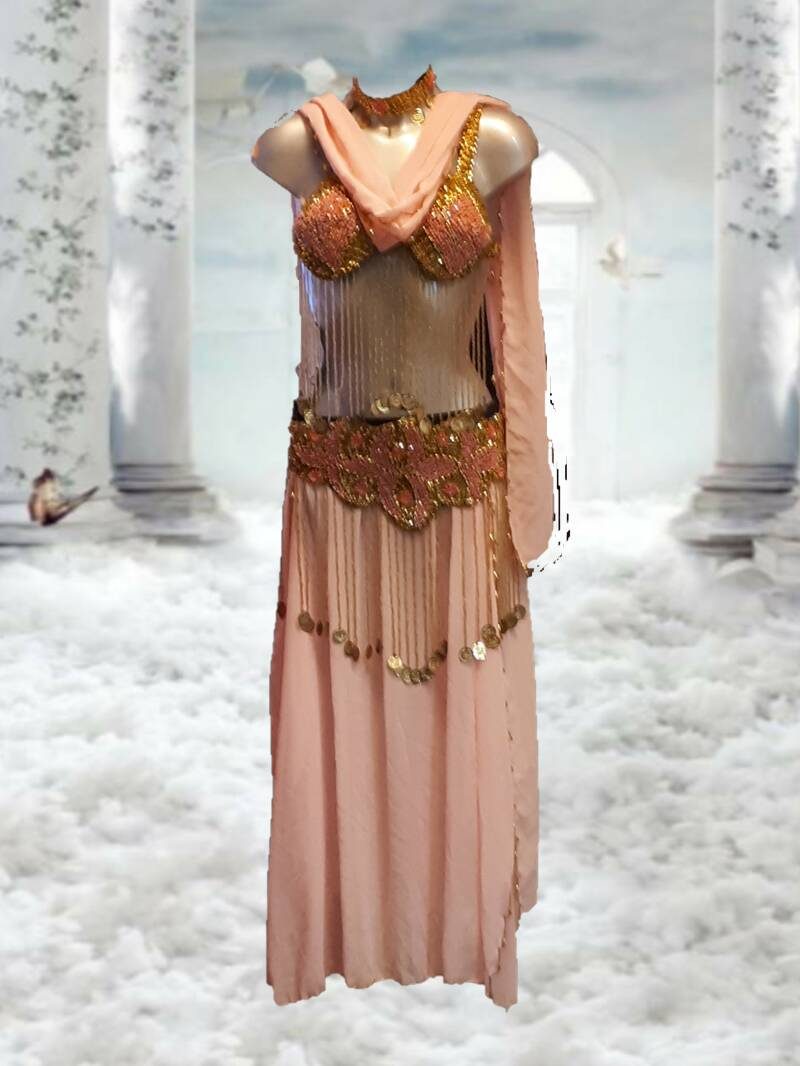 Belly dance costume Pink/Gold