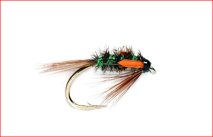 DIAWL BACH GREEN HOLOGRAPHIC