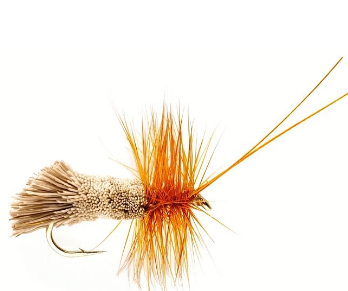 SEDGE GODDART  NATURAL