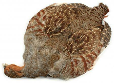 Partridge Skin , English  Veniard