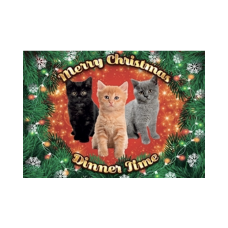 Plenty Gifts Placemat Xmas Kittens