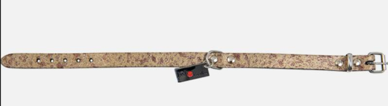 Collar and leash gold
