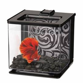 Ma betta kit ez-care Zwart 2,5L