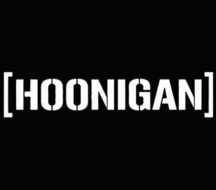 Hoonigan sticker