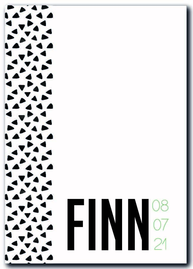 Sample :  Finn