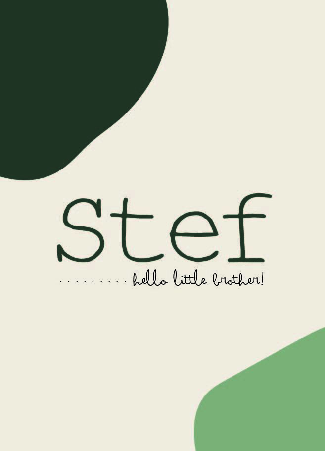 Sample :  Stef