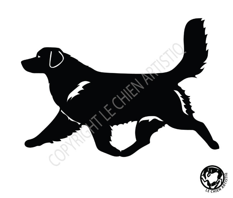 Nova Scotia Duck Tolling Retriever ! Dravend ! vinyl sticker