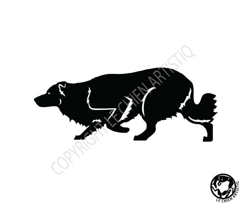 Border Collie ! vinyl sticker