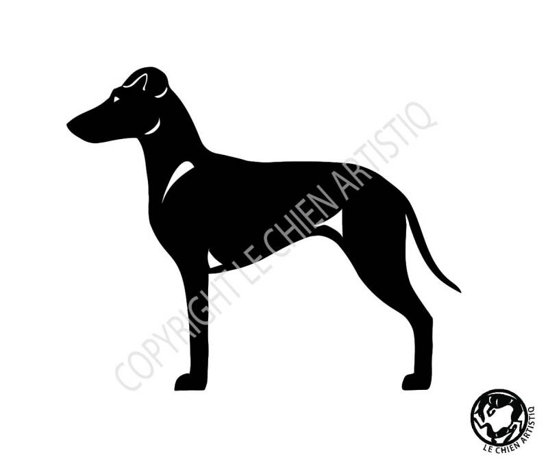 Manchester Terrier ! vinyl sticker