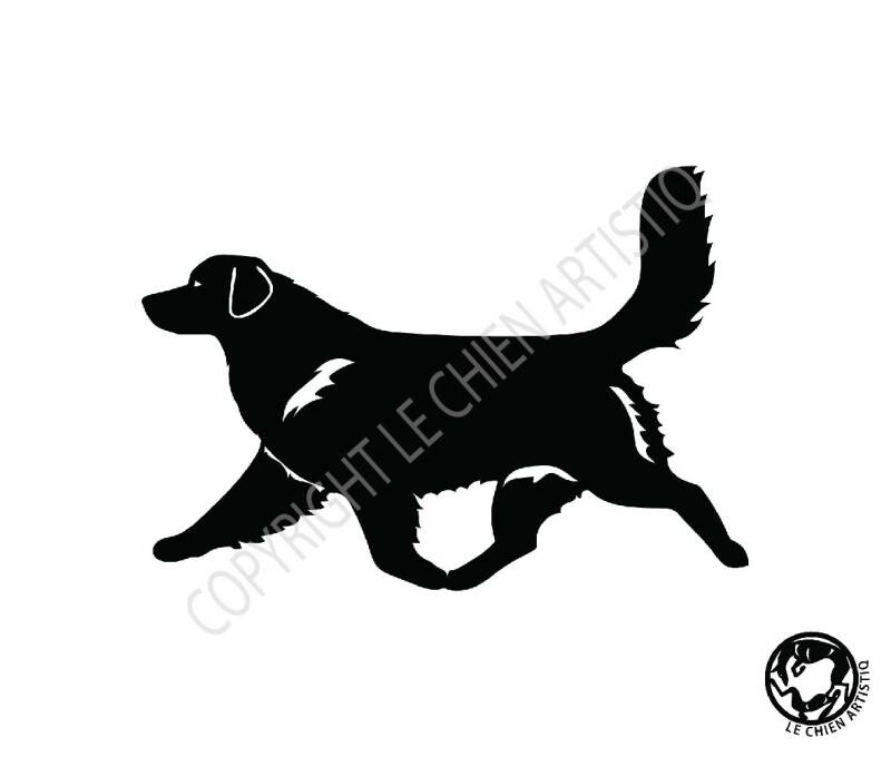 Nova Scotia Duck Tolling Retriever dravend ! vinyl sticker