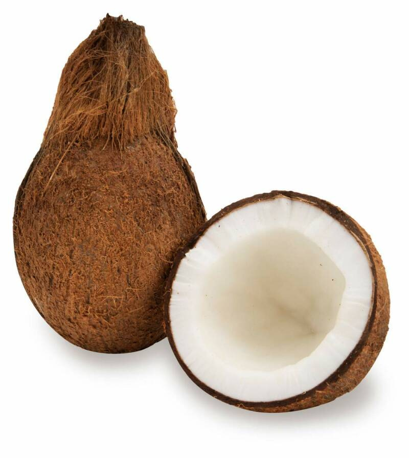 Fresh Coconut 1p For Pooja