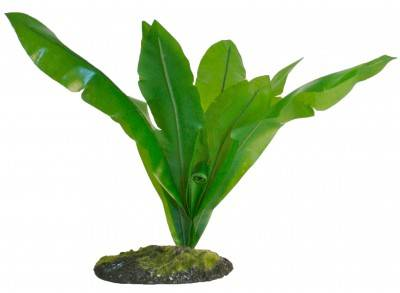 ZooMed Birds Nest Fern Naturalistic Flora™
