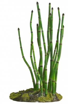 ZooMed Horsetail Fern BU-51E Naturalistic Flora™
