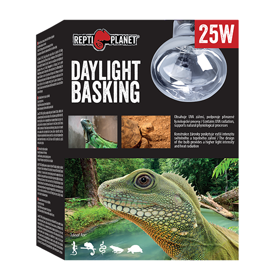 REPTI PLANET DAYLIGHT BASKING
