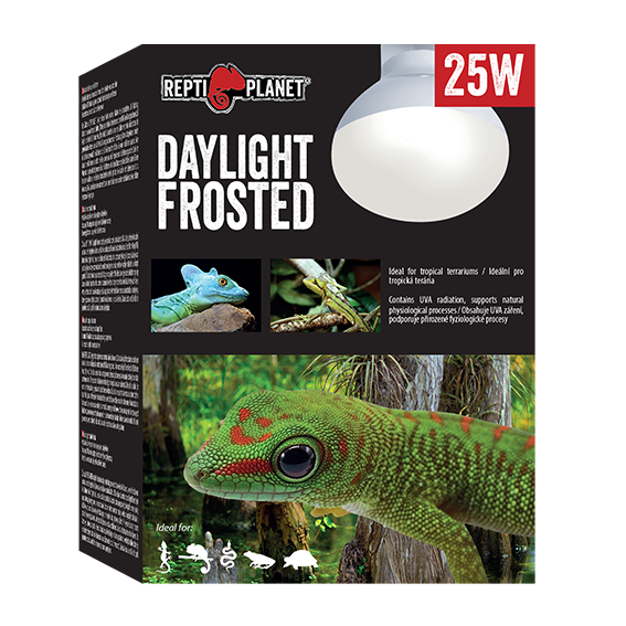 REPTI PLANET DAYLIGHT FROSTED