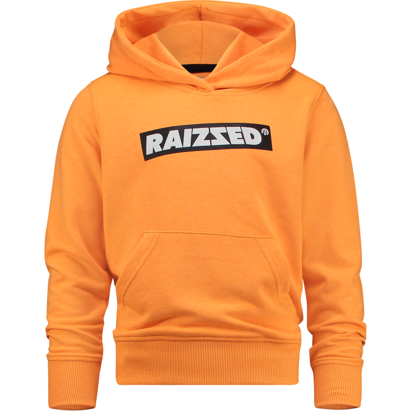 Raizzed | New Orleans Hoodie Neon Orange