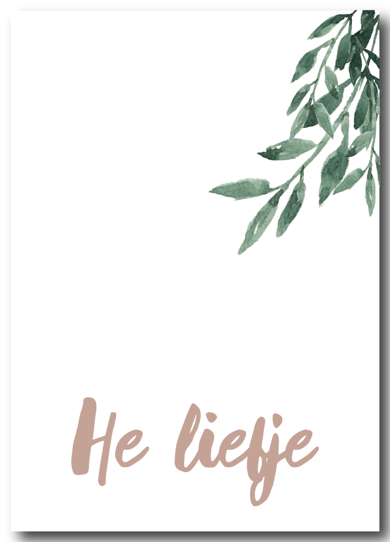 WS Q-4 : He liefje