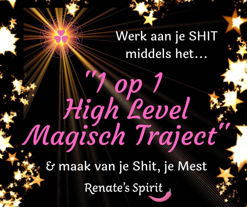 1 op 1 High Level Magisch Traject