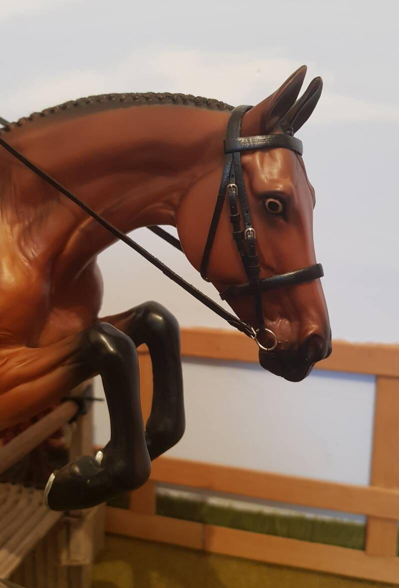 Plain Cavesson Buckled Bridle