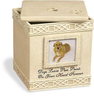 Dog Paw Prints Keepsake Box with Small Photo Frame    s49556