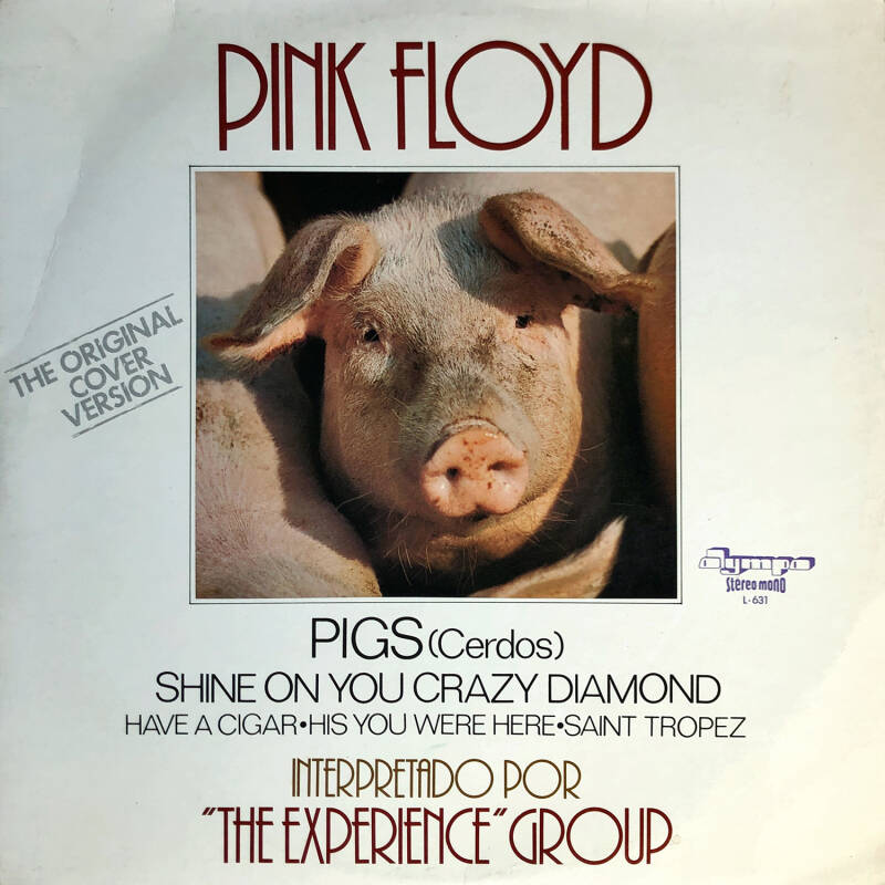 Pink Floyd tribute - The Experience Group - Pink Floyd [Spain] - LP