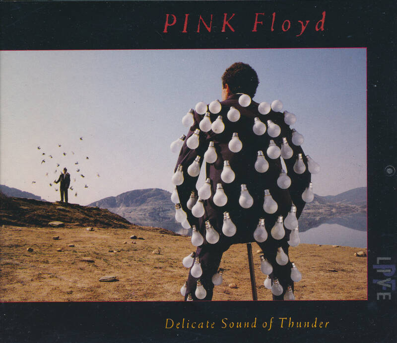 Pink Floyd - Delicate Sound Of Thunder [UK] - 2CD