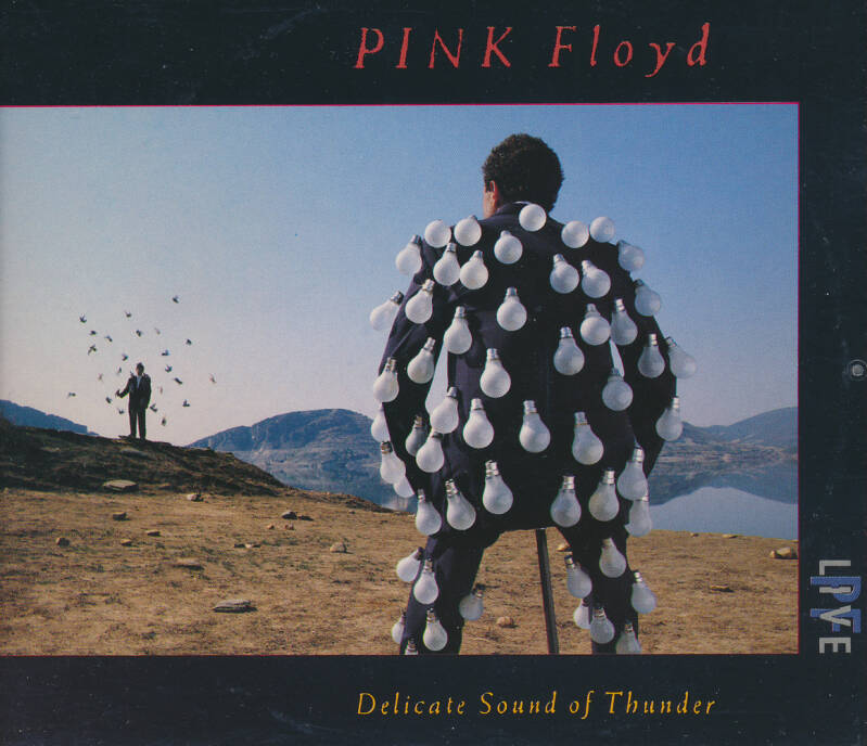 Pink Floyd - Delicate Sound Of Thunder [Austria] - 2CD